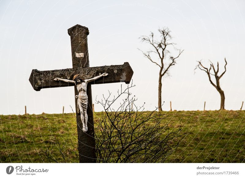 Jesus in the country Environment Nature Landscape Plant Spring Bad weather Tree Field Hill Sign Crucifix Compassion Obedient Peaceful Goodness Dedication