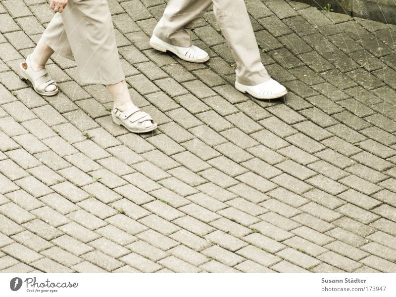 Human being Woman Man Old Adults Movement Legs Couple Feet Together Going Contentment Footwear Places Stride Touch