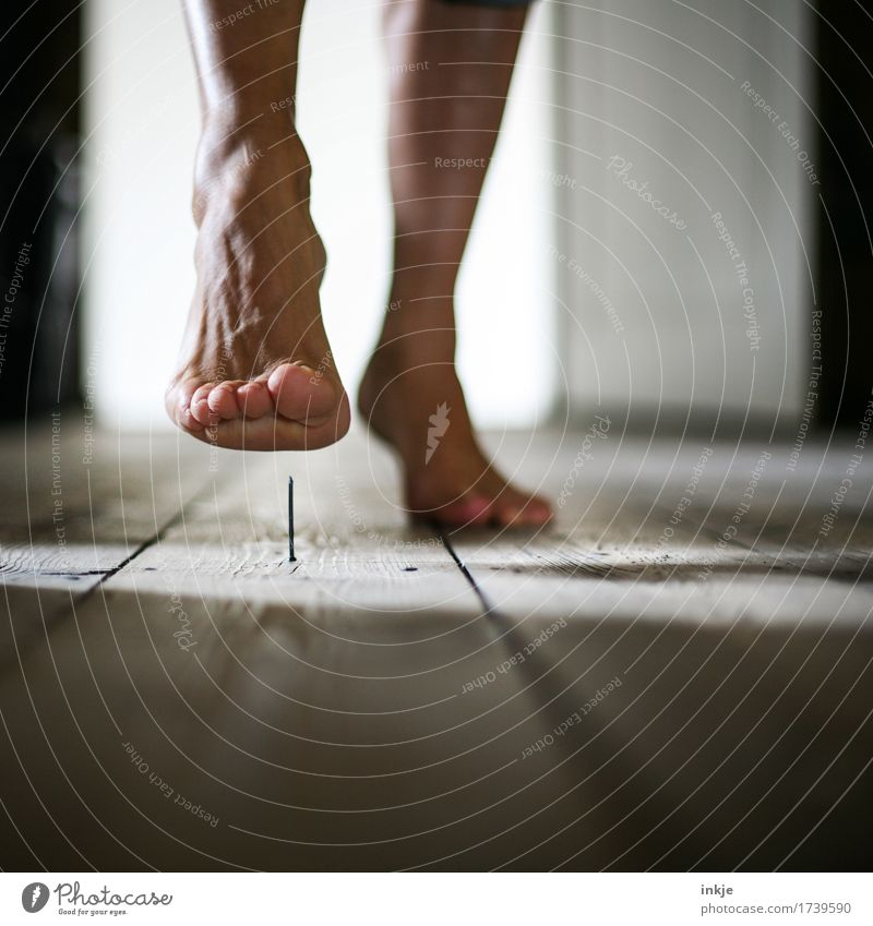 Human being Woman Adults Life Feet Going Living or residing Point Threat Risk Pain Barefoot Wooden floor Experience Nail Recklessness