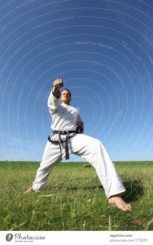 Man Hand Sports Healthy Masculine Tall Action Sports Training Athletic Practice Fist Tread Karate Kick Athlete Human being