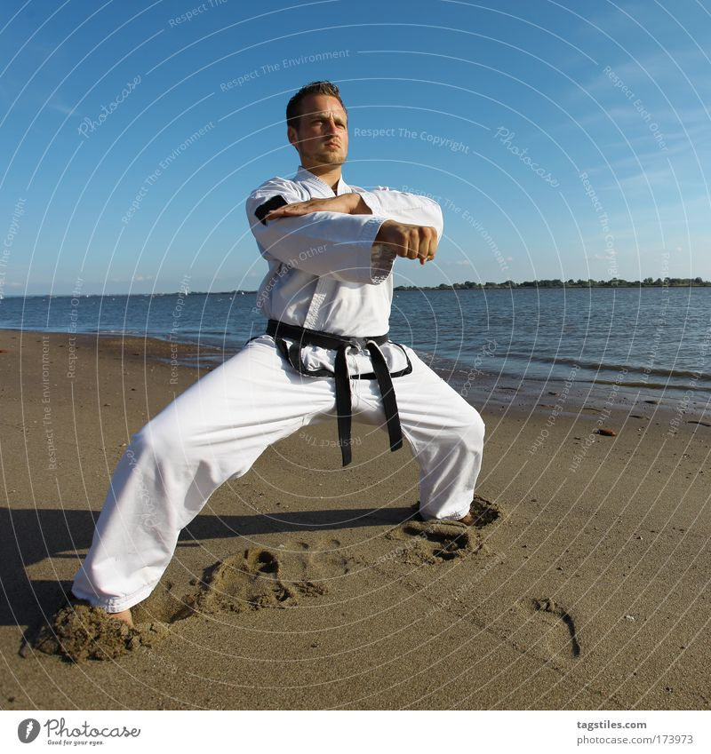 Man Hand Sports Martial arts Healthy Masculine Tall Action Sportsperson Sports Training Athletic Practice Fist Jubilee Tread Karate