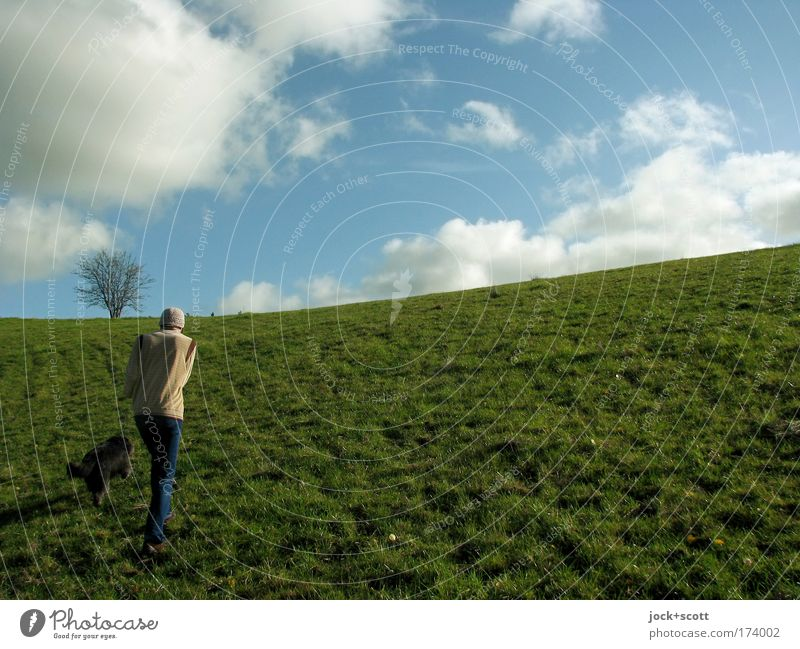 Dog Human being Man Green Summer Tree Relaxation Loneliness Landscape Clouds Animal Environment Emotions Meadow Lanes & trails Natural