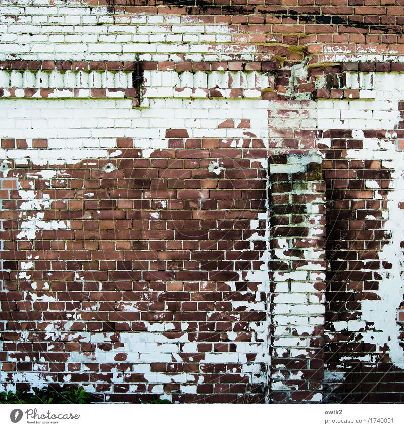 Old Wall (building) Building Wall (barrier) Facade Decoration Transience Historic Manmade structures Derelict Decline Brick Trashy Shabby Ruin Destruction