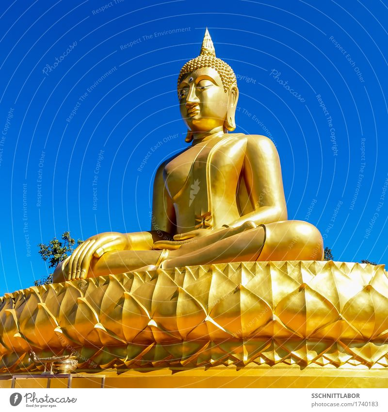 Fine giant Theravada Buddha seated in lotus posture Exotic Beautiful Harmonious Contentment Meditation Vacation & Travel Tourism Summer Success Sculpture Gold
