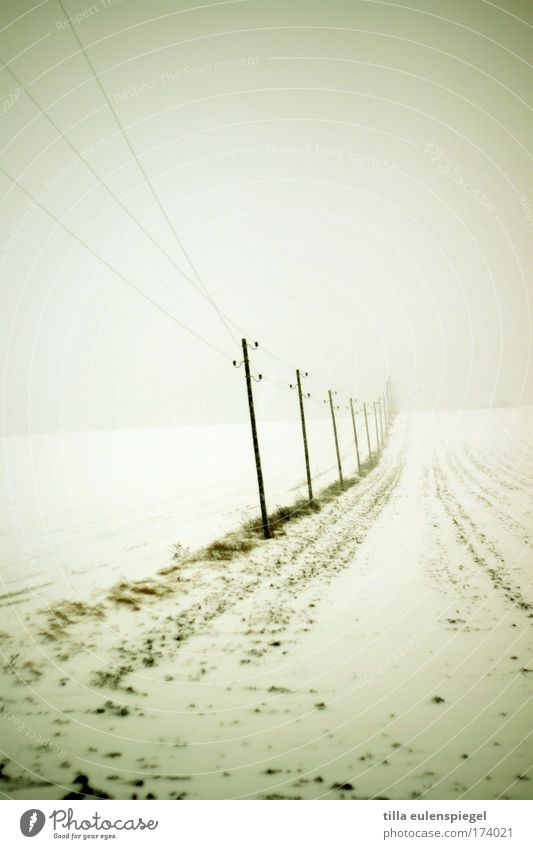 Winter Cold Snow Landscape Ice Field Fog Gloomy Frost Cable Authentic Electricity pylon Transmission lines Really Minimalistic Bad weather