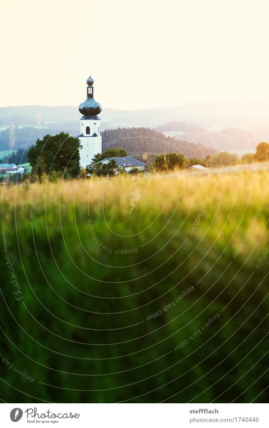 Bavarian Forest onion tower Landscape Cloudless sky Summer Beautiful weather Grass Field Hill Village Deserted Church Tower Church spire Onion tower Relaxation