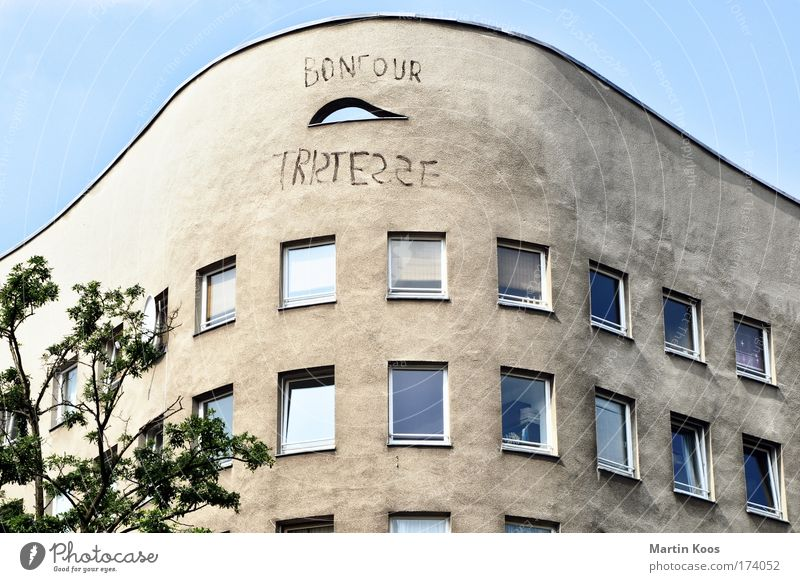 Tree House (Residential Structure) Window Wall (building) Architecture Graffiti Building Wall (barrier) Facade Flat (apartment) Living or residing Gloomy Characters Perspective Poverty Berlin