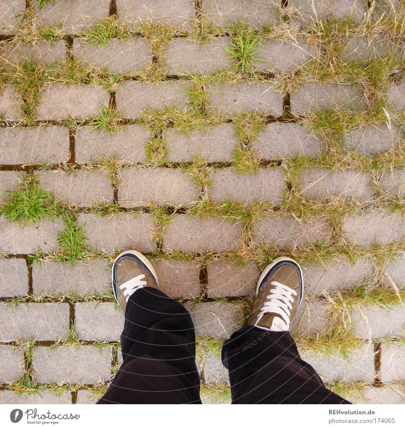 Human being Green Plant Black Grass Gray Feet Lanes & trails Legs Contentment Wait Environment Safety Stand Authentic Trust