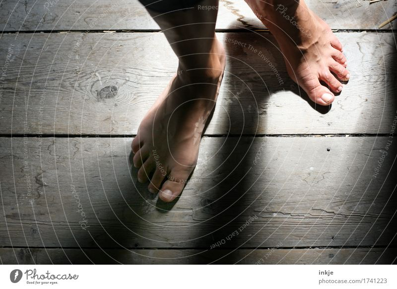 wooden floorboards Senses Wooden floor Floorboards Woman Adults Life Feet Women`s feet 1 Human being Going Stand Esthetic Dark Emotions Moody Curiosity Barefoot