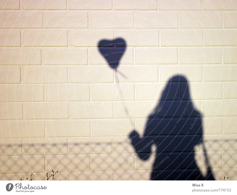 Woman Human being Joy Adults Love Emotions Happy Couple Feasts & Celebrations Contentment Heart Flying Happiness Shadow Balloon