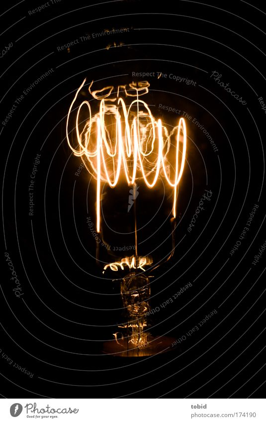 light bulb carbon wire Technology Science & Research Energy industry Inspiration Light Colour photo Close-up Electric bulb Invention Dark Illuminate Glow