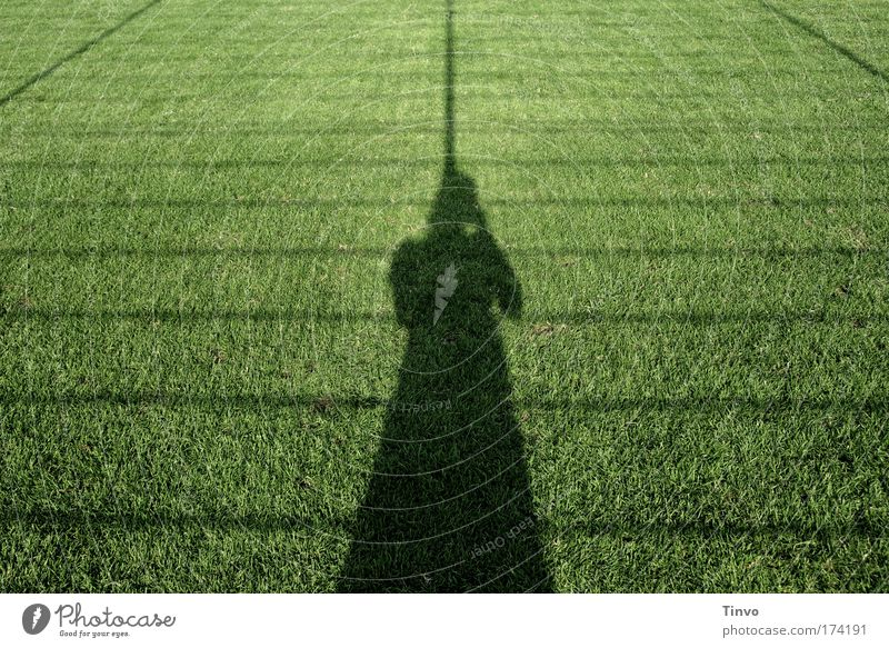 Woman Human being Nature Green Summer Adults Loneliness Meadow Grass Sadness Spring Line Stripe Lawn Net Audience