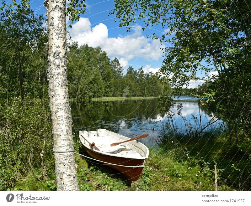 Suddenly at the lake Wellness Leisure and hobbies Fishing (Angle) Vacation & Travel Freedom Summer Summer vacation Sun Environment Nature Landscape Sky Clouds