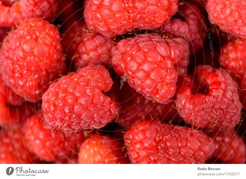 Red Raspberry Fruits Food Nutrition Eating Breakfast Organic produce Vegetarian diet Diet To feed Feeding Simple Healthy Beautiful Juicy Sweet Energy Exotic