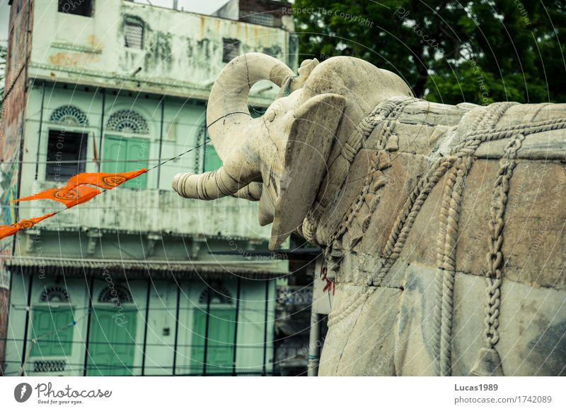 Elephant made of stone Vacation & Travel Tourism Adventure Far-off places Expedition Udaipur India Small Town Places Temple Facade Balcony Tourist Attraction