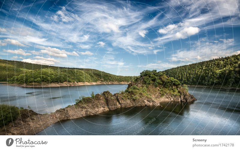 Almost like a Fjọrd Nature Landscape Plant Elements Water Sky Clouds Summer Beautiful weather Tree Bushes Hill Rock Lakeside Eifel River dam Blue Brown