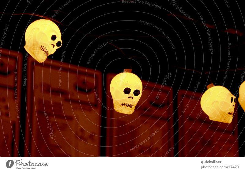 skull Light Bar Photographic technology Death's head