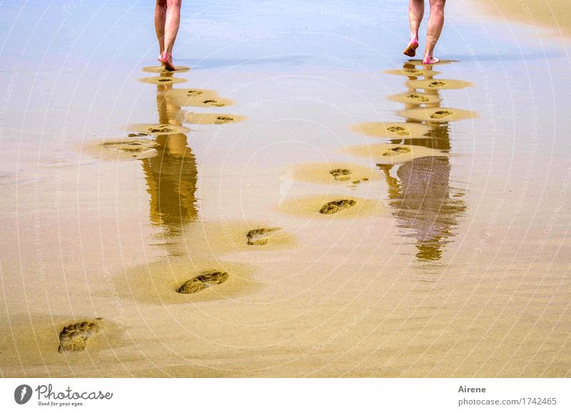 900 paces... Summer vacation Beach Ocean Human being Masculine Feminine Young woman Youth (Young adults) Man Adults Father Life Legs Feet 2 18 - 30 years