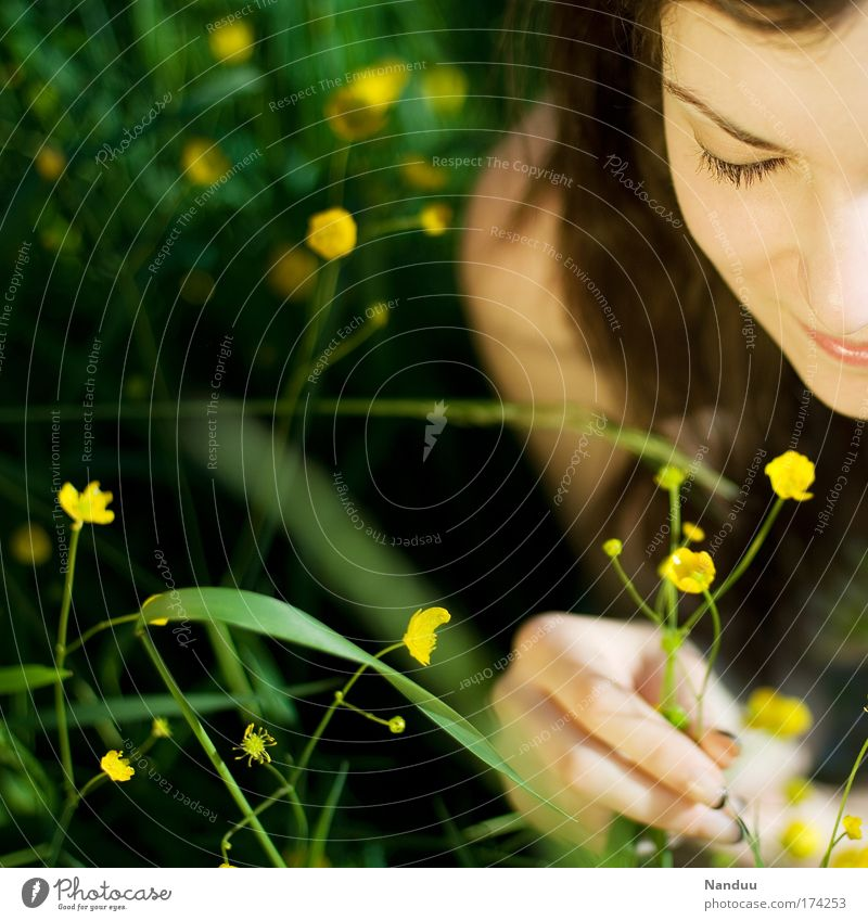 Woman Youth (Young adults) Beautiful Summer Flower Adults Meadow Feminine Happy Contentment Hope 18 - 30 years Smiling Human being Young woman Beautiful weather