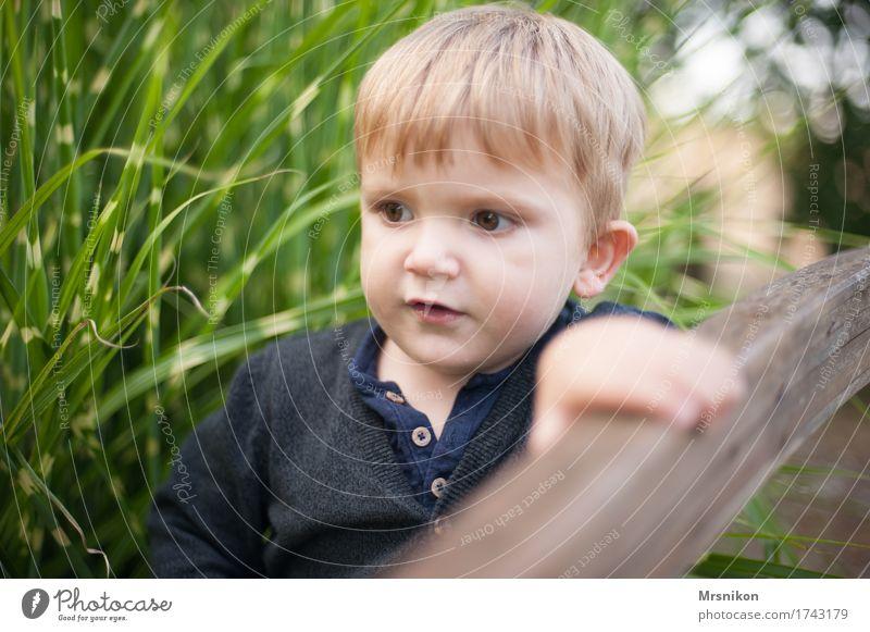explorers Child Toddler Boy (child) Infancy 1 - 3 years Observe Discover Dream Bridge railing Handrail Garden Son Blonde Looking Walking Stand Pampas grass