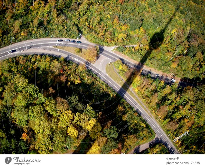 tower shadow Colour photo Nature Landscape Tower Forest Television tower Shadow Street Tall Summer Tree Height Bird's-eye view Lanes & trails Stuttgart
