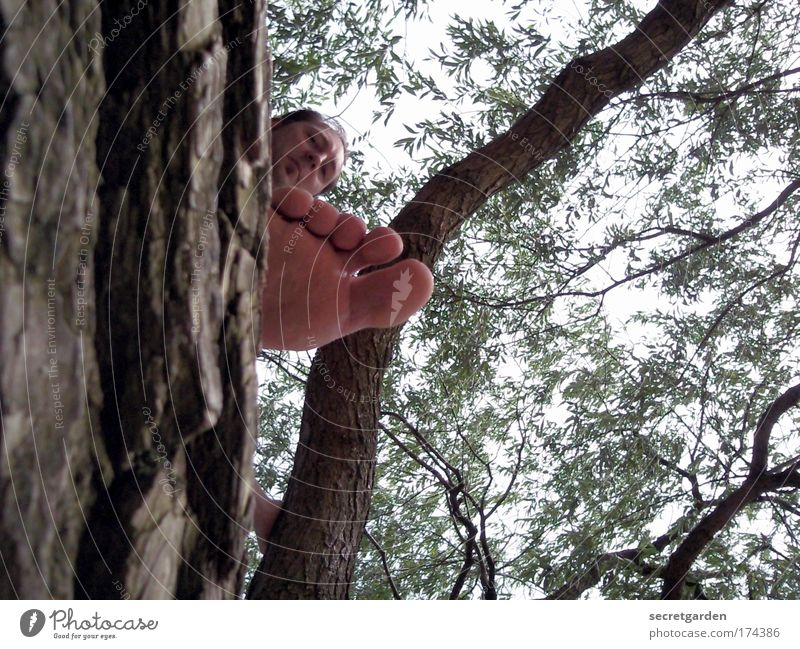 Human being Tree Vacation & Travel Ocean Summer Beach Adults Life Playing Freedom Wood Head Park Feet Trip Masculine