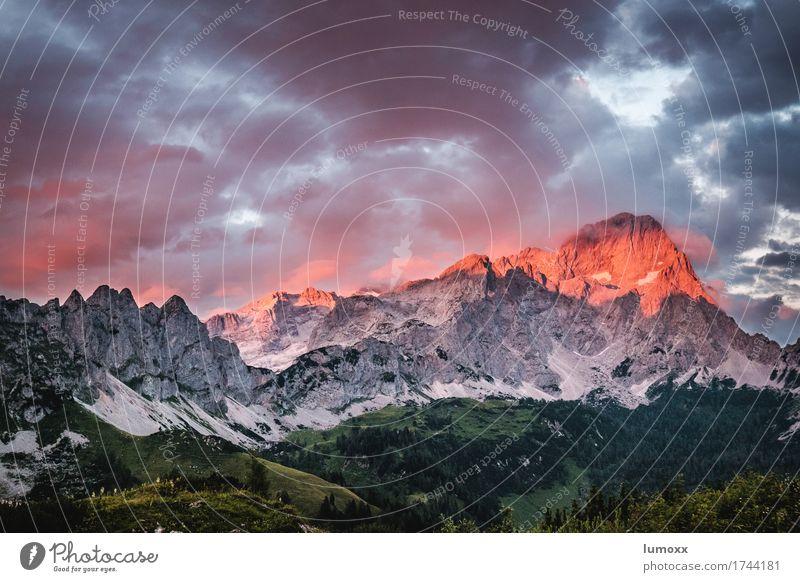 ALPENGLÜHEN Landscape Elements Clouds Sunrise Sunset Rock Alps Mountain Peak Gray Green Red Exterior shot Discover Hiking alpenglow High mountain region Austria