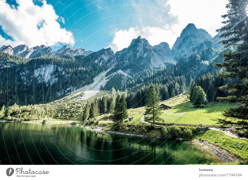 gosausee Environment Nature Landscape Water Clouds Tree Meadow Forest Rock Alps Mountain Lakeside Gosau lake Clean Blue Green Colour photo Exterior shot