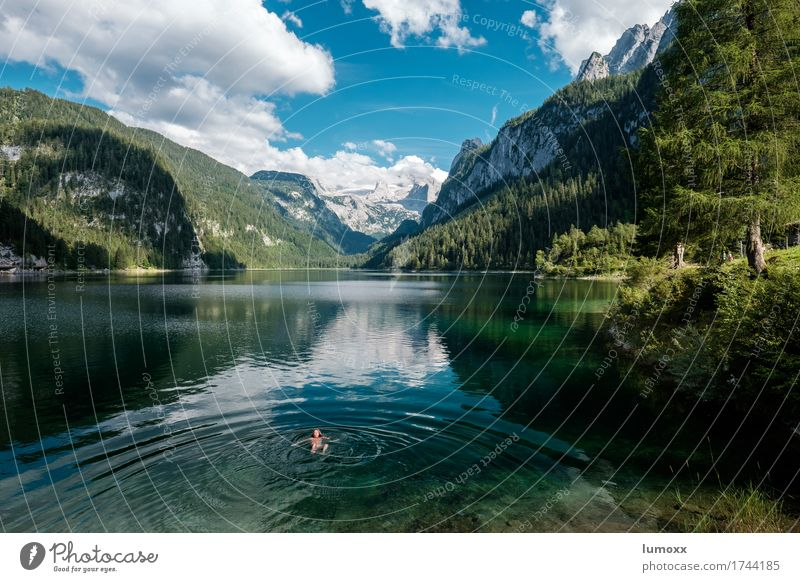Auffi obi eini Swimming & Bathing Hiking Nature Landscape Water Clouds Summer Rock Alps Mountain Dachstein mountains Lakeside Gosau lake Freeze Blue Green