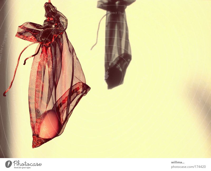 Art Nutrition Gift Easter Whimsical Egg Transparent Hang Trade Boredom Financial Industry Hiding place Shadow play Thrifty Moral To swing