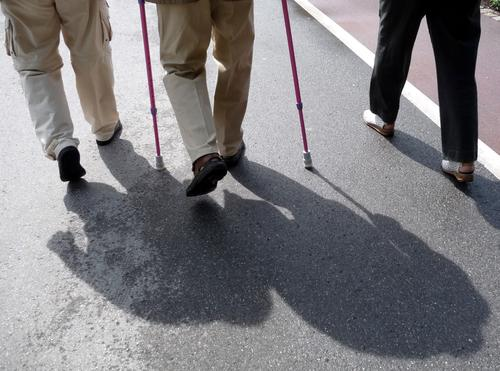 Legs of walking seniors with supports in sunlight with shadows on a street Colour photo Subdued colour Exterior shot Detail Day Light Shadow Contrast Sunlight