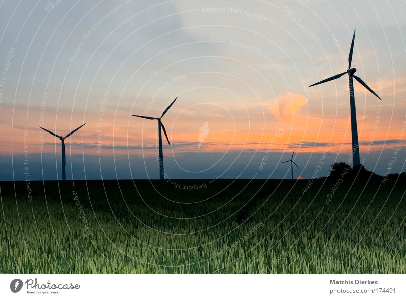 Nature Sky Sun Red Meadow Field Wind Environment Romance Grain Wind energy plant Agriculture Sunset Organic farming Eco-friendly Renewable energy