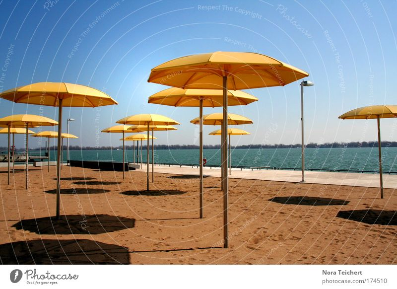 Blue Beautiful Sun Vacation & Travel Summer Calm Yellow Relaxation Style Moody Leisure and hobbies Wait Design Modern Stand Safety