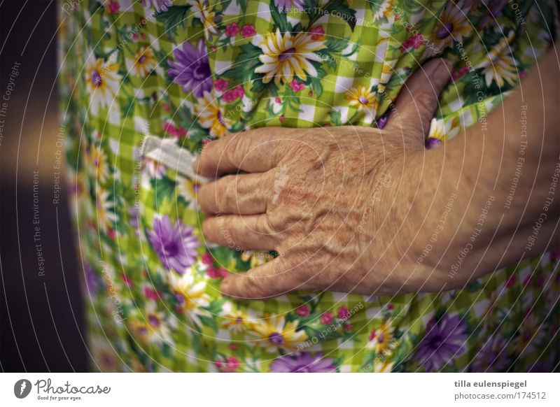 Woman Human being Old Hand Life Senior citizen Contentment Wait Natural Authentic Near Serene Grandmother Wisdom 60 years and older Female senior