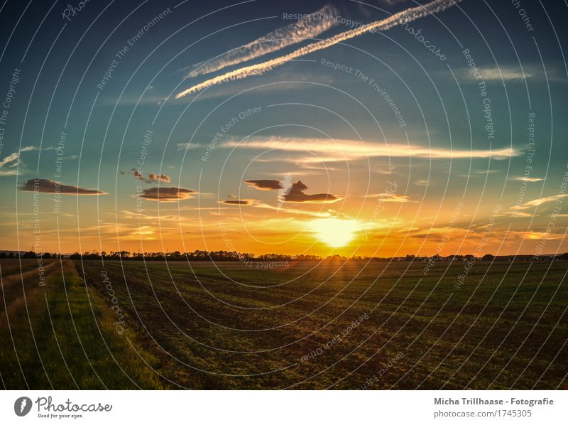 Sunset in the open air Vacation & Travel Environment Nature Landscape Sky Clouds Sunrise Sunlight Beautiful weather Grass Agricultural crop Field Deserted