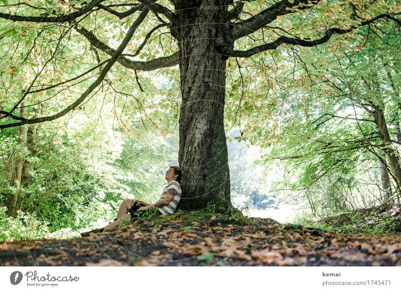Woman leans against a tree and looks up Lifestyle Harmonious Well-being Contentment Senses Relaxation Calm Leisure and hobbies Trip Freedom Hiking Human being