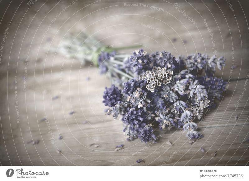 lavender Lavender floats Table Wooden table Board Blossoming Flower Comforting Medicinal plant Medication Alternative medicine Soul Healthy Decoration