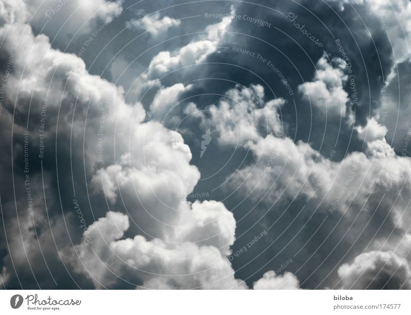 Nature Water Sky White Summer Black Clouds Life Gray Air Wind Weather Environment Drops of water Earth Aviation