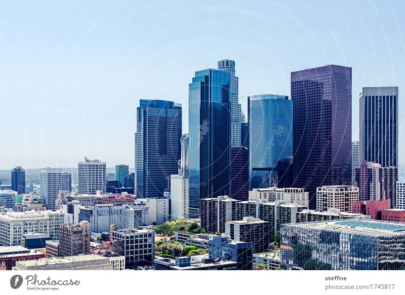 City of Angels Los Angeles Downtown Skyline High-rise Town California USA Office building Beautiful weather Business Colour photo Exterior shot Copy Space top