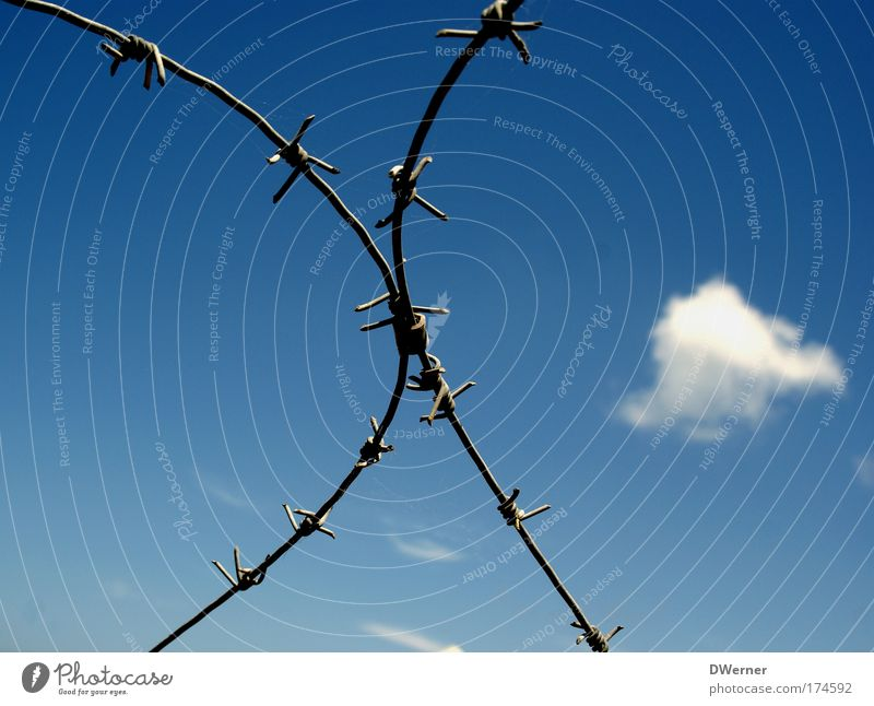 barbed wire Hunting Freedom Rope Sky Clouds Beautiful weather Razor blade Metal Signs and labeling Rebellious Safety Responsibility Dangerous Aggravation