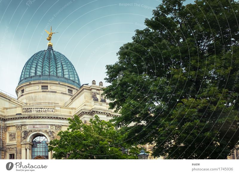 Town Tree Architecture Art Tourism Germany Gold Culture Historic Past Tourist Attraction Symbols and metaphors Landmark Capital city Old town City trip