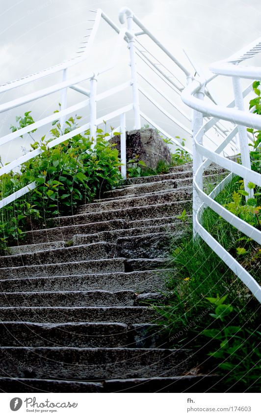 Nature Sky White Green Vacation & Travel Calm Clouds Dark Cold Freedom Stone Trip Stairs Tourism Bushes Authentic