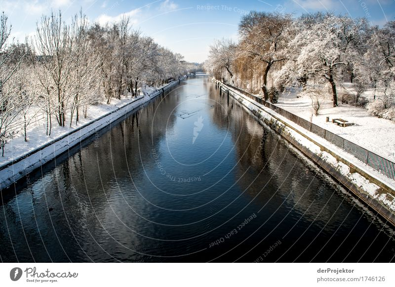 Winter at the Landwehr Canal Vacation & Travel Tourism Trip Adventure Far-off places Freedom Sightseeing City trip Winter vacation Environment Nature Landscape