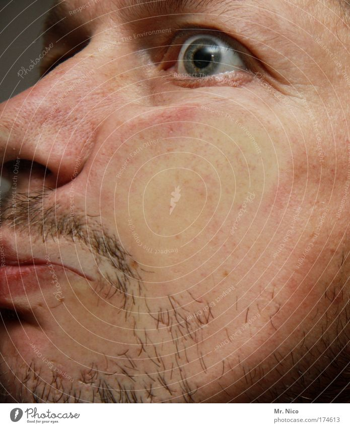 Face Eyes Head Skin Mouth Masculine Nose Hair Crazy Perspective Facial hair Boredom Guy Cheek Grimace Man