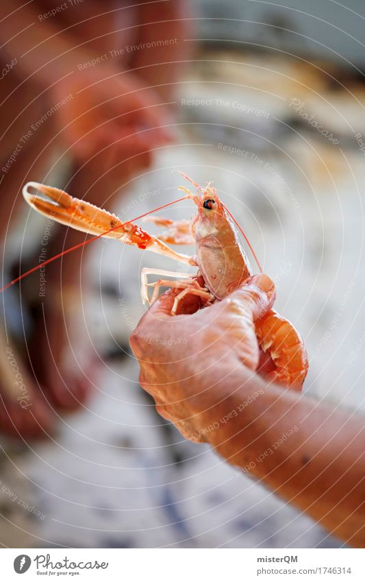Silhouette. Food Fish Seafood Nutrition Organic produce Slow food Sushi Italian Food Esthetic Shellfish Coral shrimp Pair of pliers Shrimps Delicious Fishery