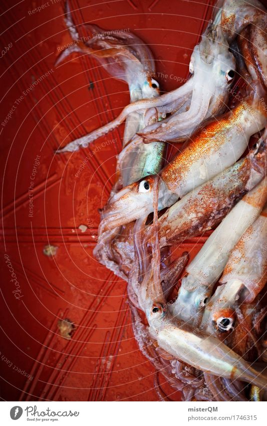 Noon. Art Esthetic Squid Seafood Fish market Fresh Fishing quota Catch Fishery Tentacle Colour photo Multicoloured Exterior shot Close-up Detail Experimental