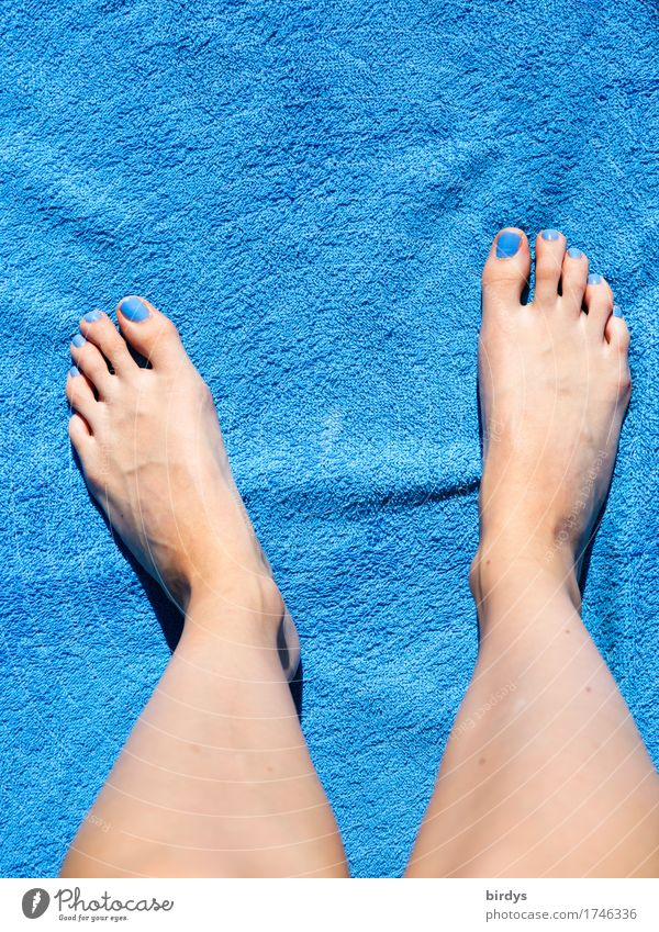 Classic in blue Style Beautiful Nail polish Wellness Relaxation Summer Feminine Youth (Young adults) Legs Feet 1 Human being 18 - 30 years Adults Bath towel