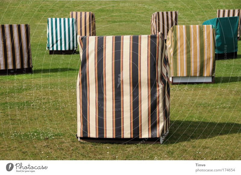Vacation & Travel Summer Loneliness Calm Meadow Cold Grass Exceptional Design Tourism Empty Trip Break Summer vacation Boredom Striped