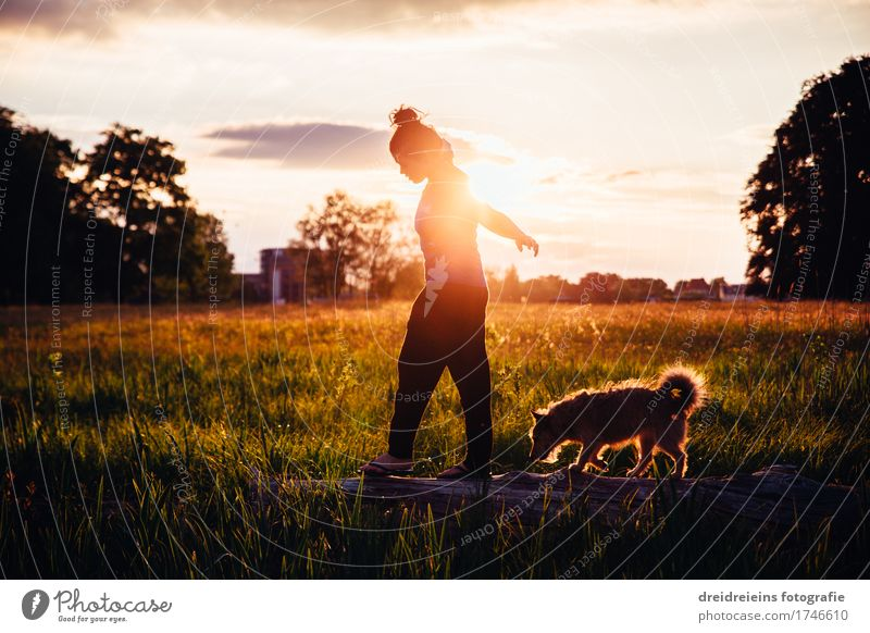 Human being Woman Dog Summer Relaxation Animal Calm Adults Life Love Movement Happy Freedom Together Friendship Park