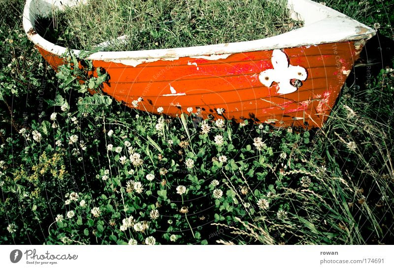 Old Green Red Grass Watercraft Transport Navigation Sailboat Full Rowboat Cruise Anchor Dinghy Overgrown Medicinal plant Motorboat